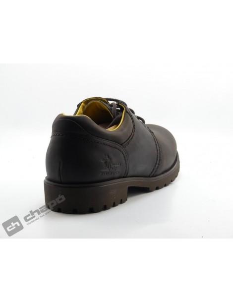 Zapatos Marron Panama Jack Panama 02 C2