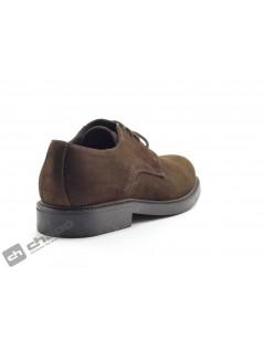 Zapatos Marron ChapÓ 28095