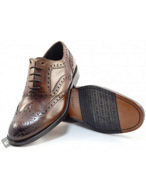Zapatos Marron Gonzalo 1008h