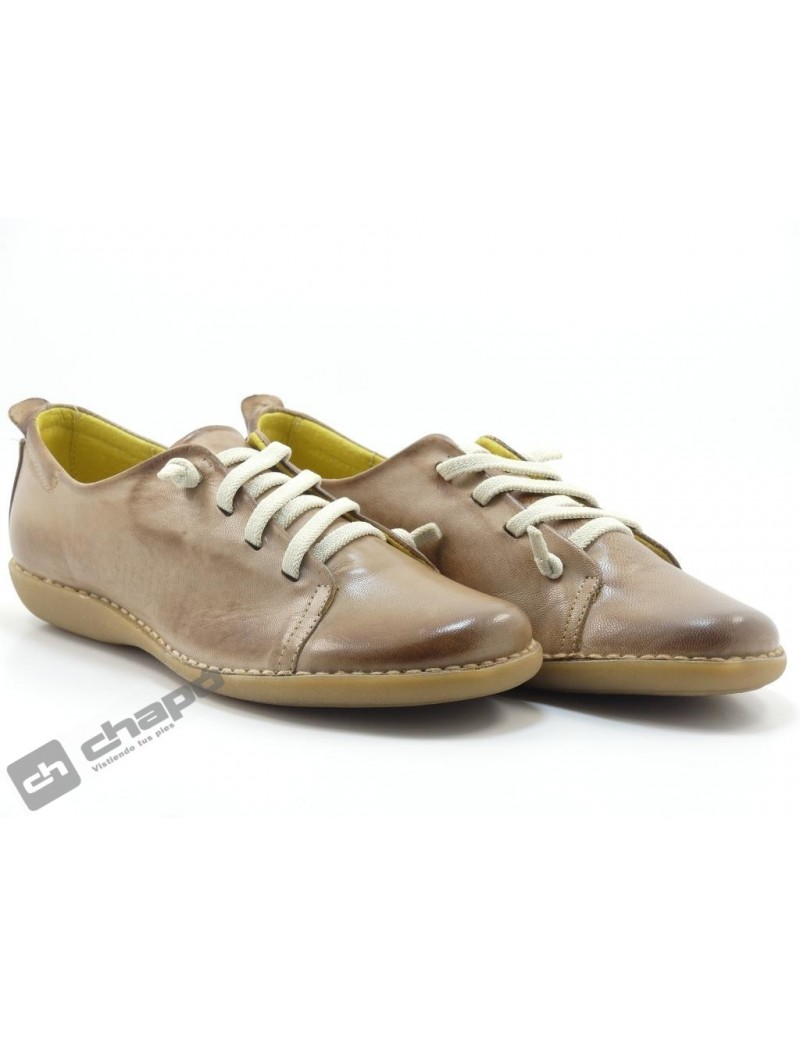 Snakers Taupe Pascualon 5005-4604-3204