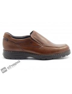 Zapatos Brandy Fluchos 9144-crono