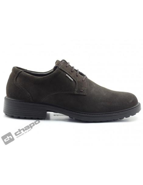 Zapatos Marron Imac 800309-400319-200399-cityward