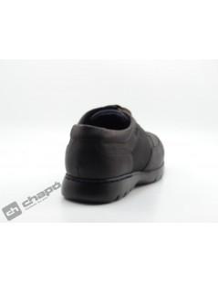 Zapatos Marron Callaghan 15903