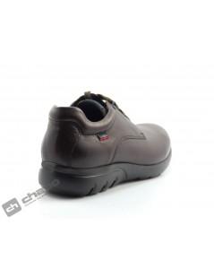 Zapatos Marron Callaghan 14004