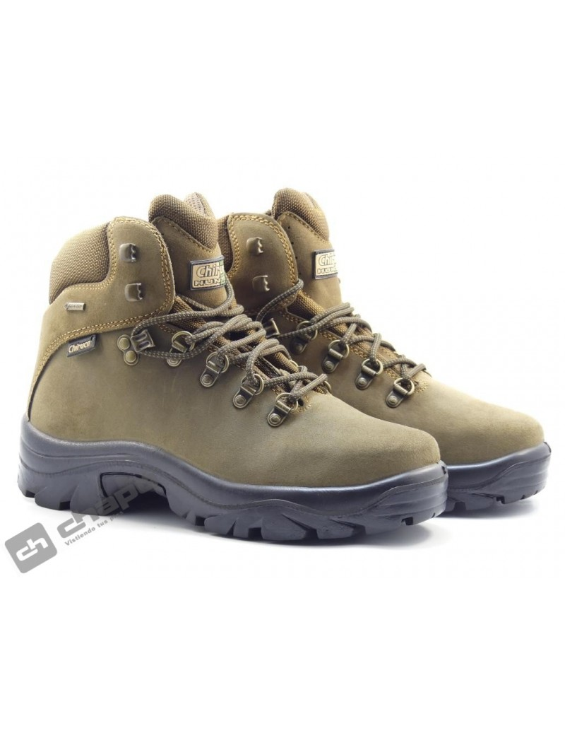 Botas Marron Chiruca Pointer 01 Gore-tex