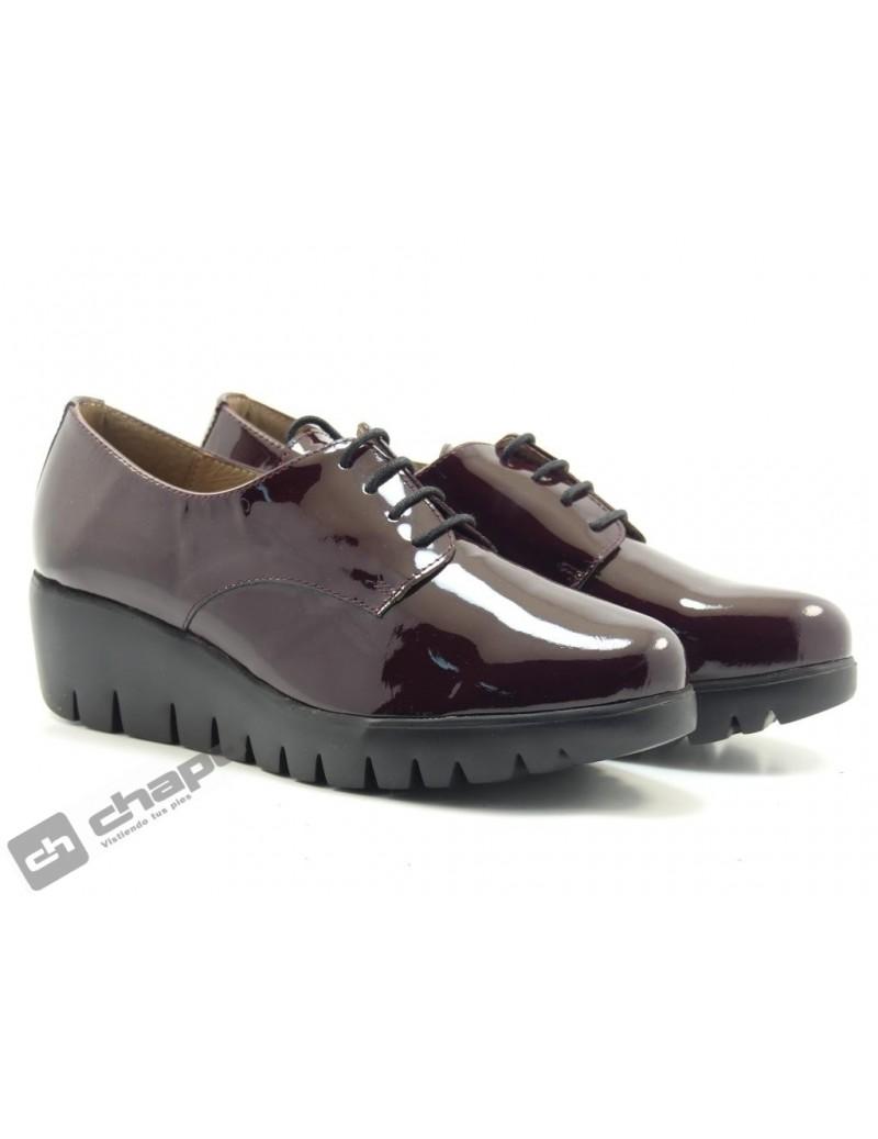 Zapatos Burdeo Zapatos Wonders C-33136