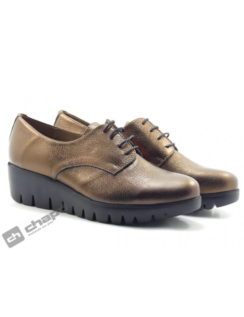 Zapatos Bronce Zapatos Wonders C-33136