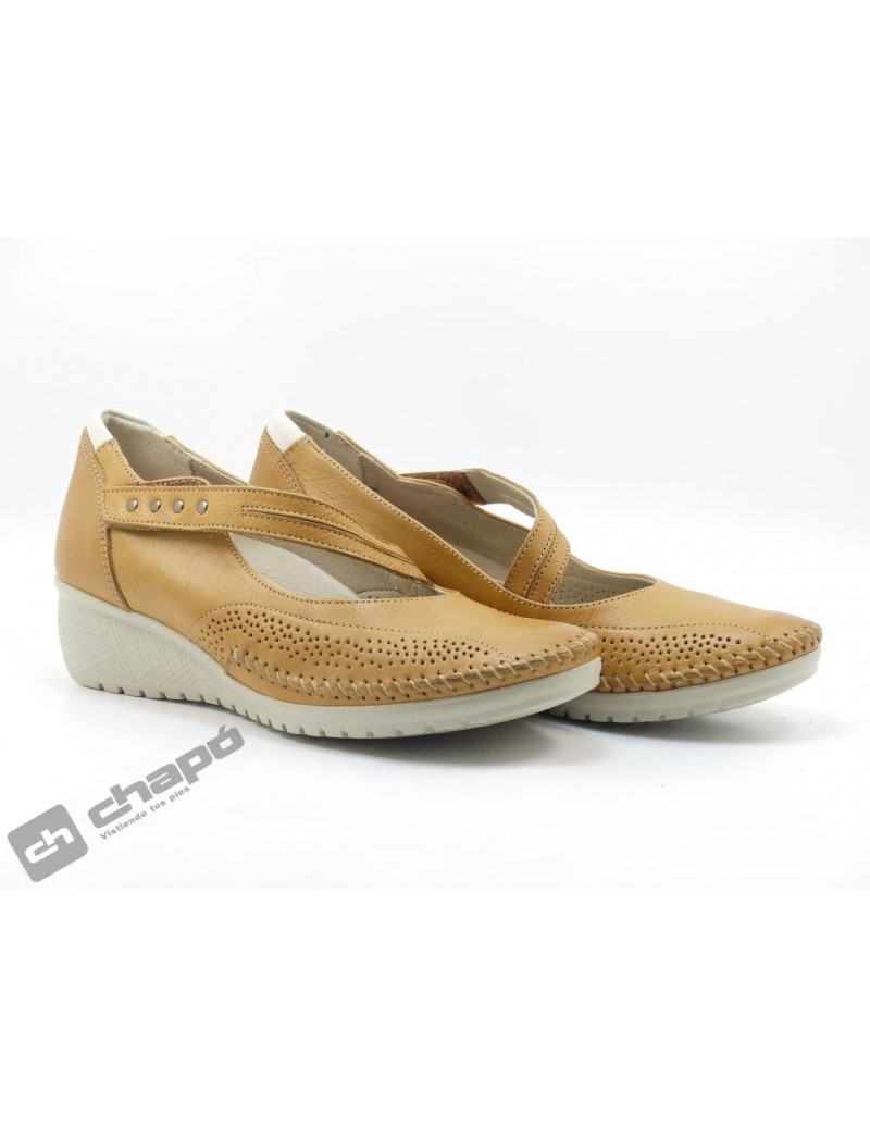 Zapatos Camel Fluchos F0757 Sasa