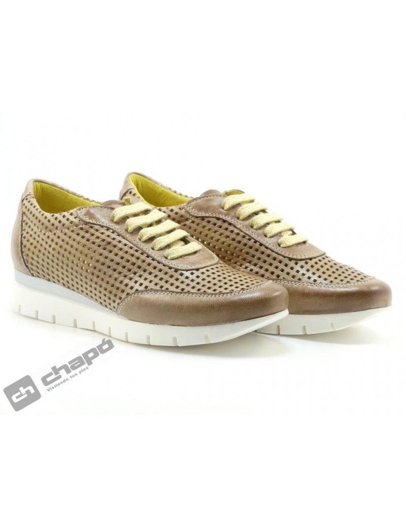 Snakers Taupe Pascualon 5063