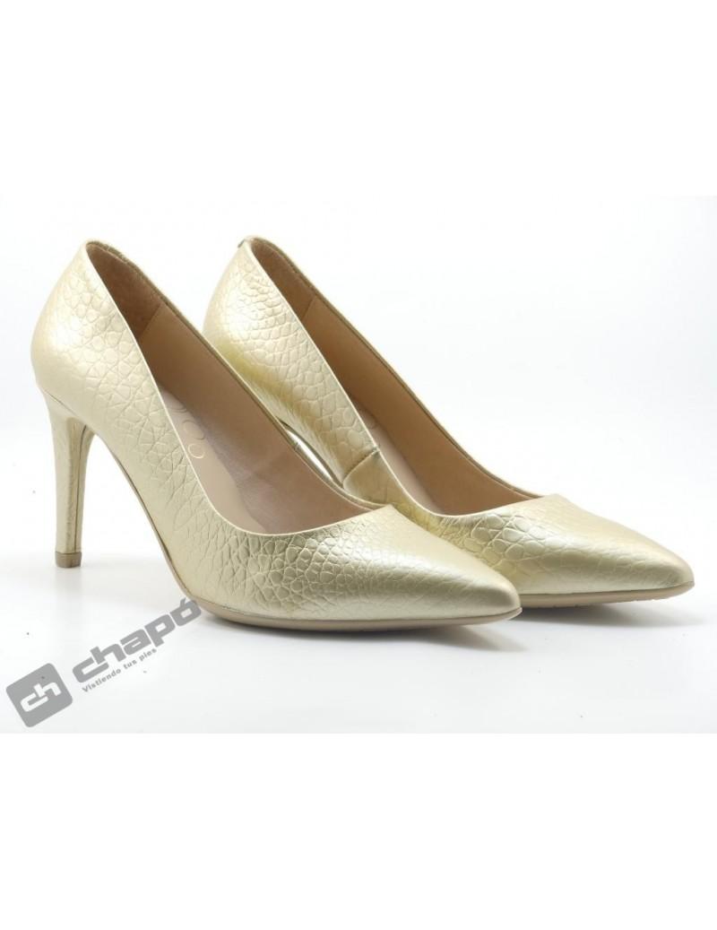 Zapatos Titanio Giko 26120