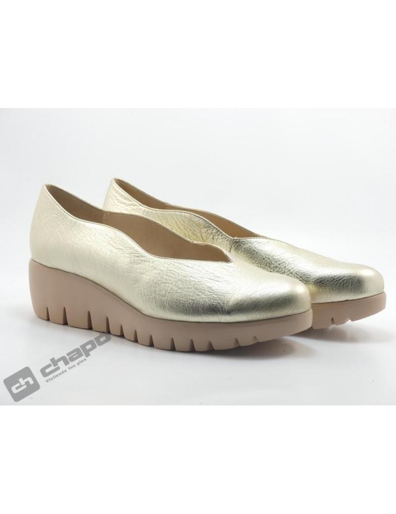 Zapatos Platino Zapatos Wonders C-33160