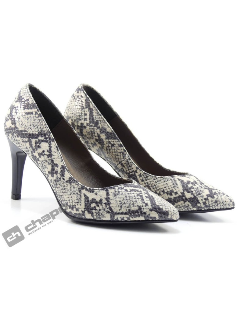 Zapatos Hielo Patricia Miller 1639