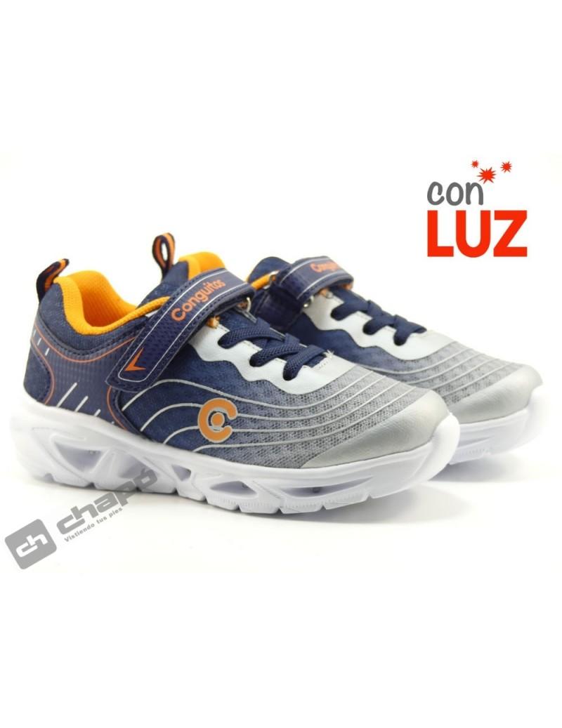 24101 LUZ