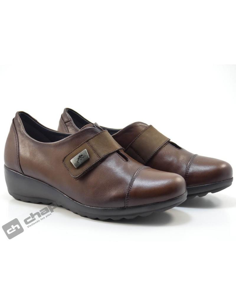 Zapatos Brandy Fluchos F1071