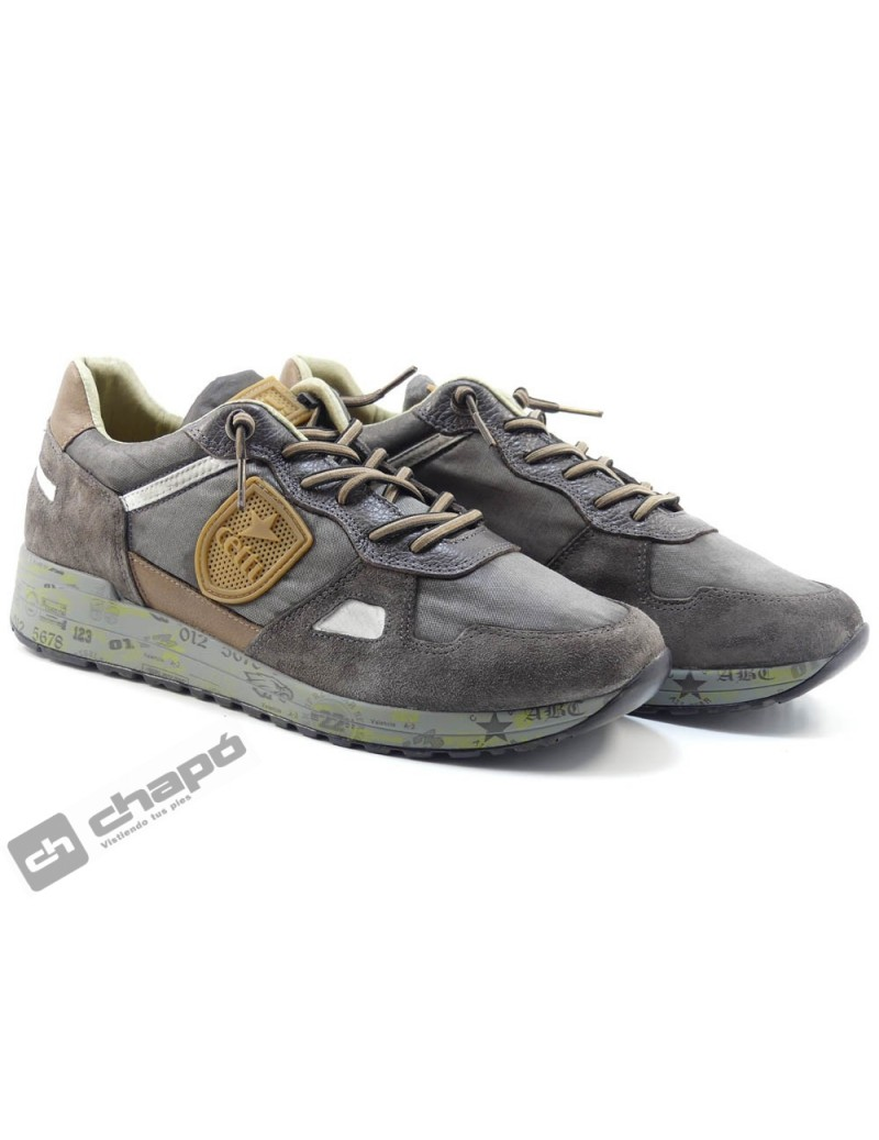 Snakers Gris Cetti C-1216