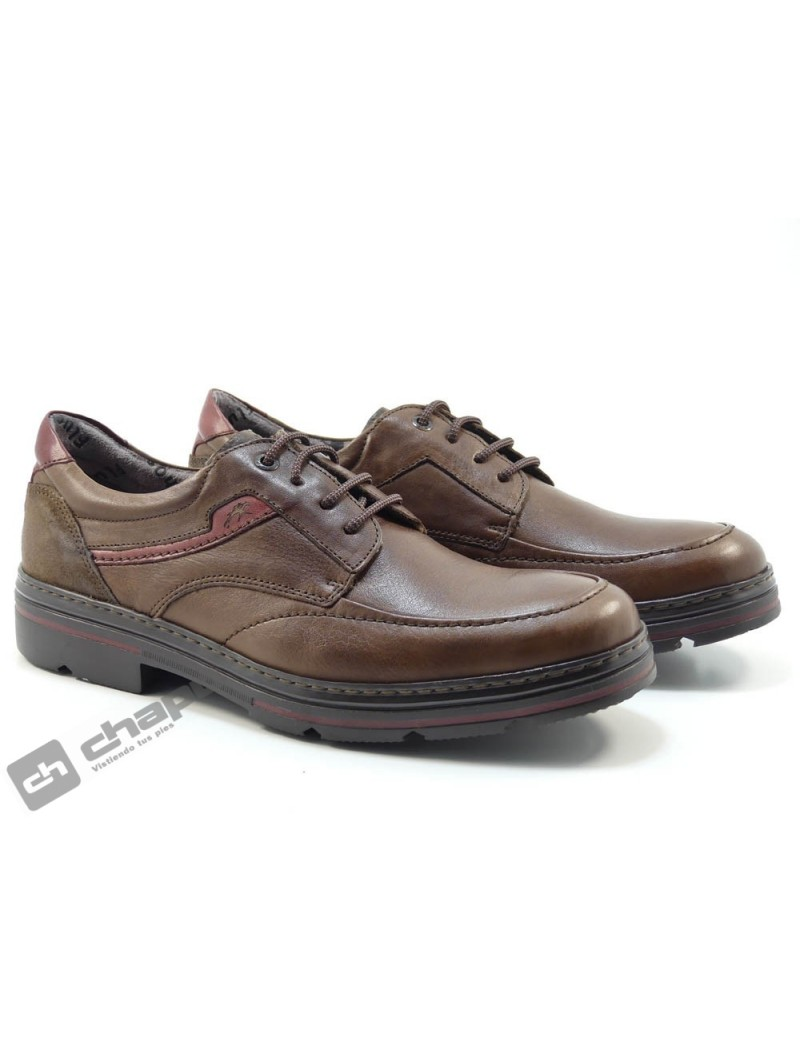 Zapatos Marron Fluchos F1045