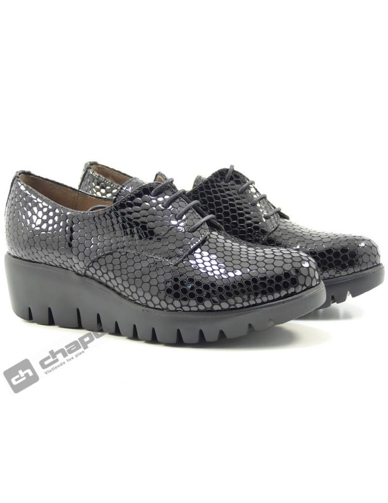 Zapatos Negro Wonders C-33136-bamba