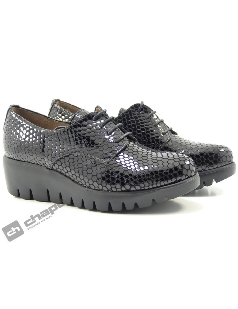 Zapatos Negro Zapatos Wonders C-33136-bamba