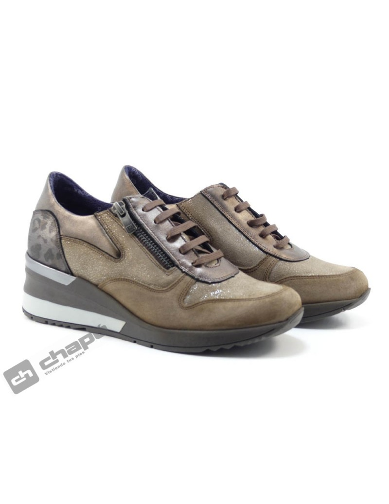 Sneakers Taupe Dorking D8589