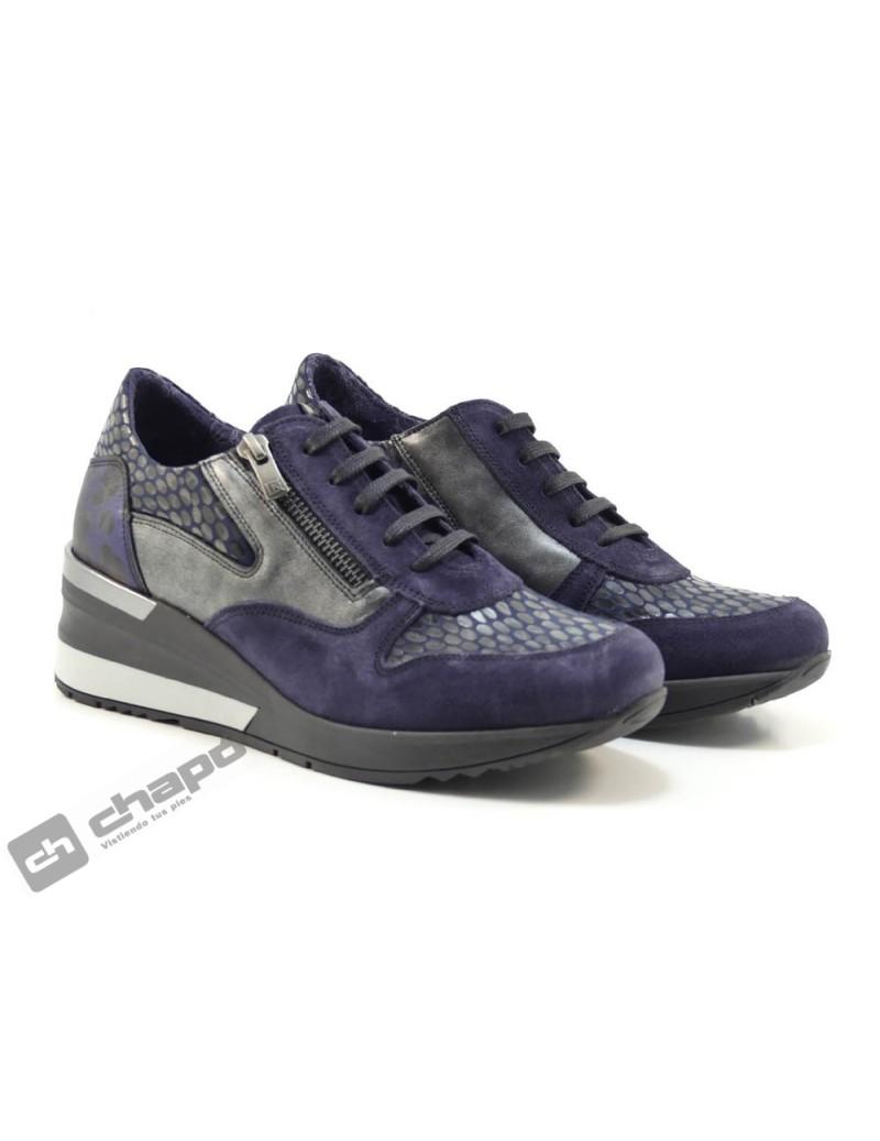 Sneakers Marino Dorking D8590