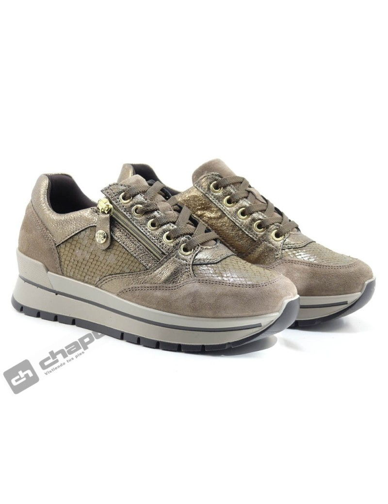 Sneakers Taupe Imac 807830