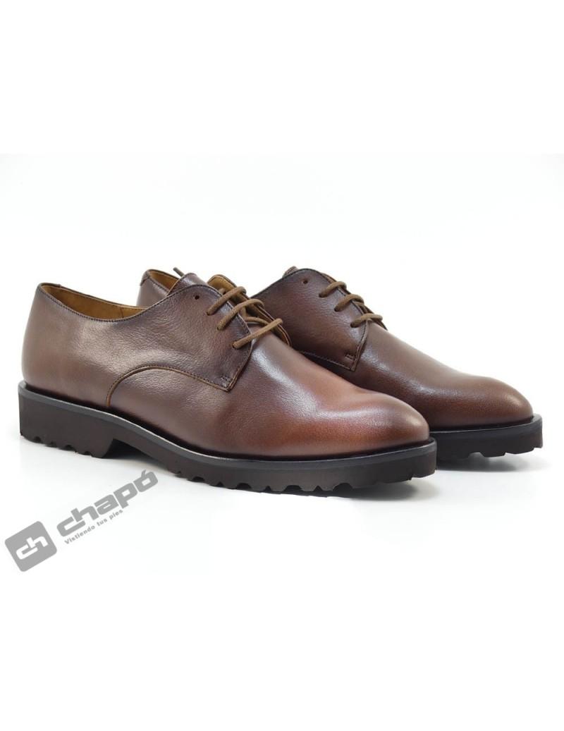 Zapatos Marron  3391