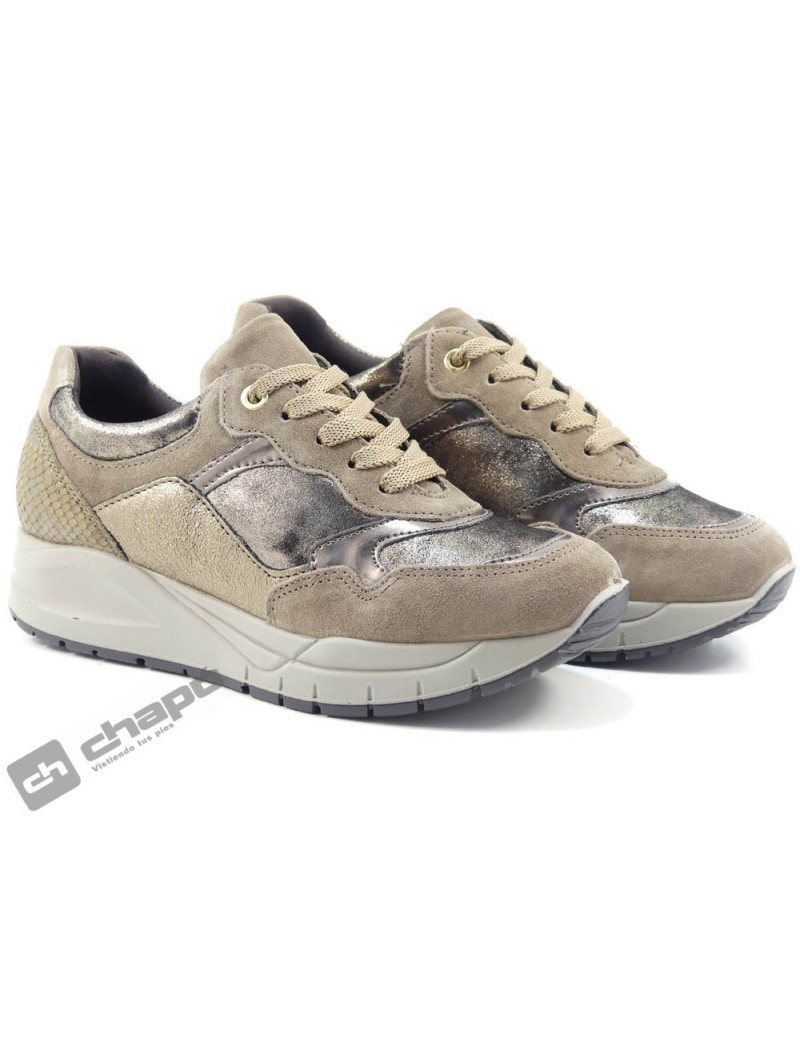 Sneakers Taupe Imac 807951