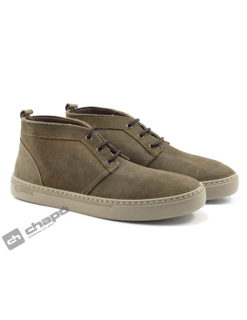 Sneakers Marron Natural World 6762