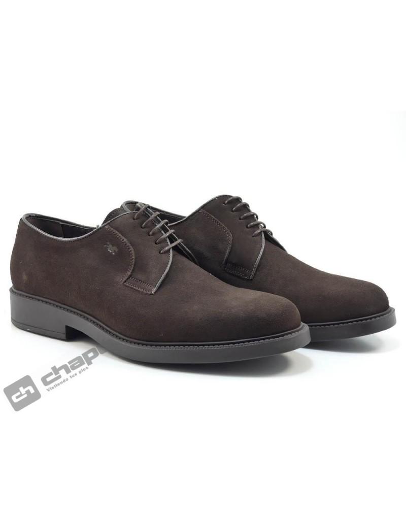 Zapatos Marron Trotters 1906