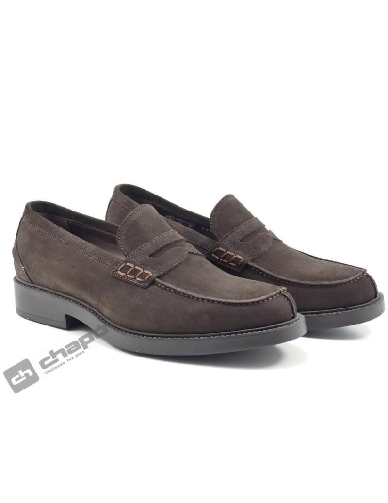 Zapatos Marron Trotters 1907