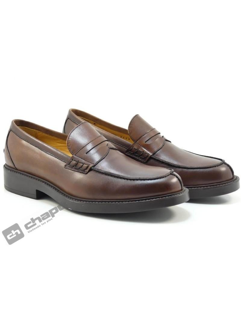 Zapatos Brandy Trotters 1907